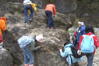 大黒岩化石.JPG