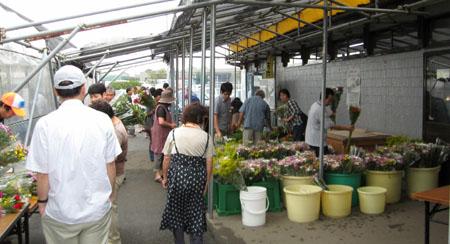 そすいの郷の盆花